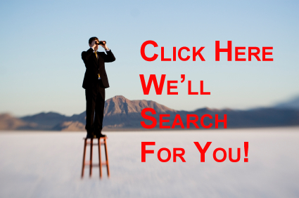 We search properties for you!